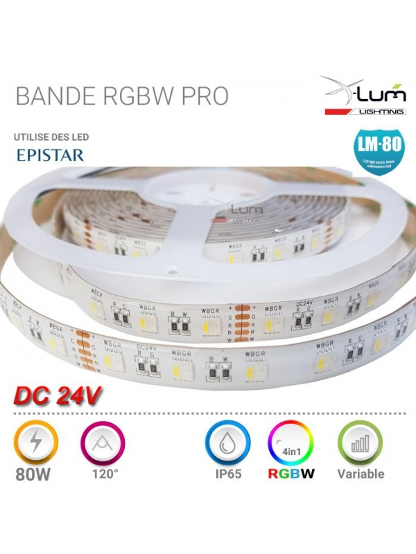 STHQ-RGBW-6K24V-RGBW-IP65-01