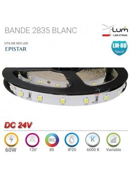 AMPOULE PAR 56 18W LED PISCINE RGB RADIO 45° AC 12V