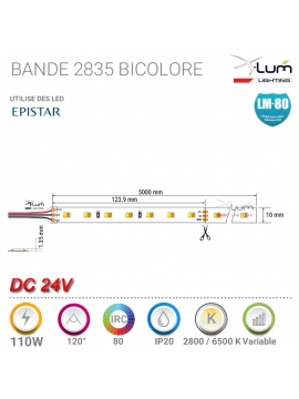 KIT 10ZONES RGB+W 8A Pro 868Mhz 12-24V AVEC télécommande