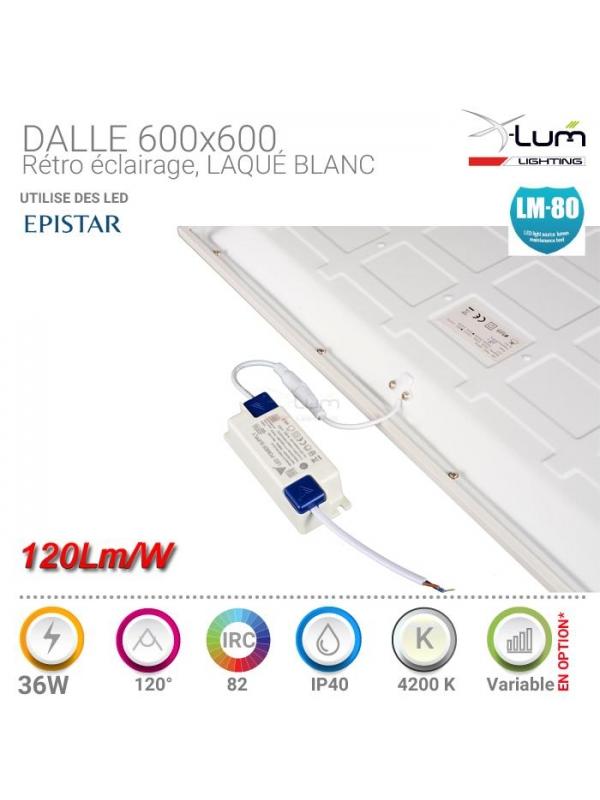 Panneau LED 36W retro éclairage X-Lum-Lighting