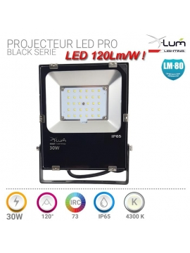Projecteur LED 30W basse tension 12v 24v