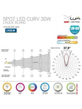 Spot LED 30W plafond Pro haute puissance.