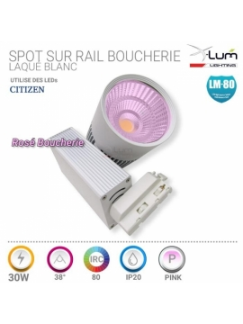 Spot 30W LED boucherie Pink